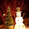 Snowman and Tree Decoration